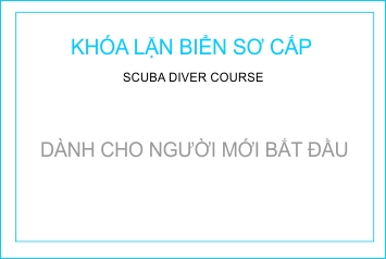 khoa hoc so cap ve lan bien